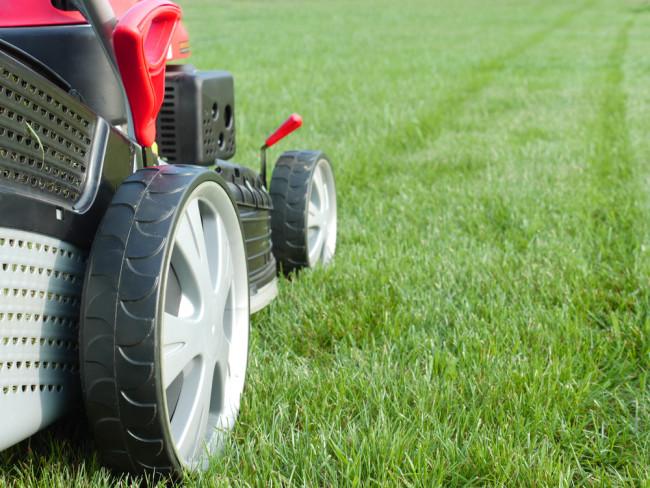 best-lawn-mower-foe-small-garden