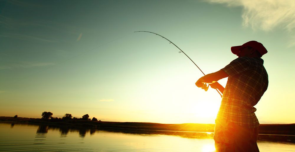 best-daiwa-fishing-reel-