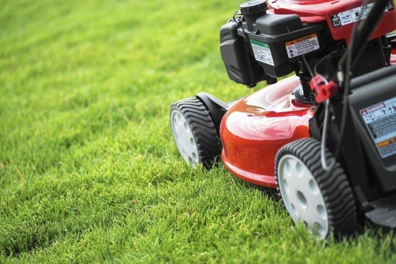 Best-petrol-Lawn-Mowers