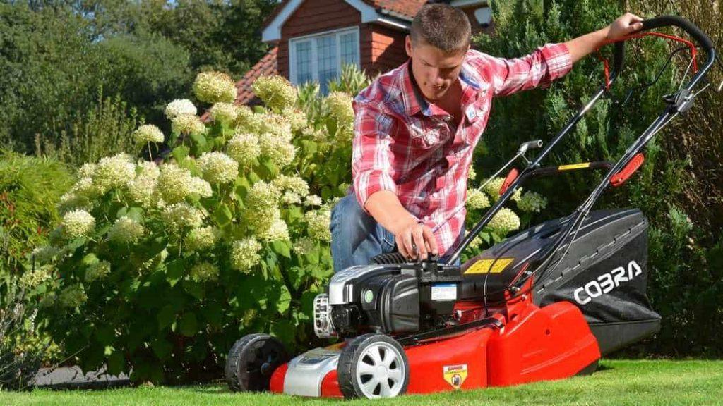 Best Roller Lawn Mowers