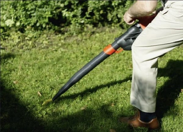 5 Best Electric Leaf Blower