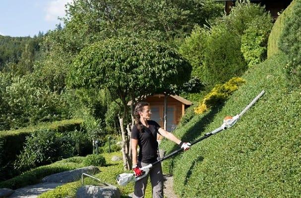 5 Best Long Reach Hedge Trimmer UK
